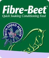 fibre-beet-mini
